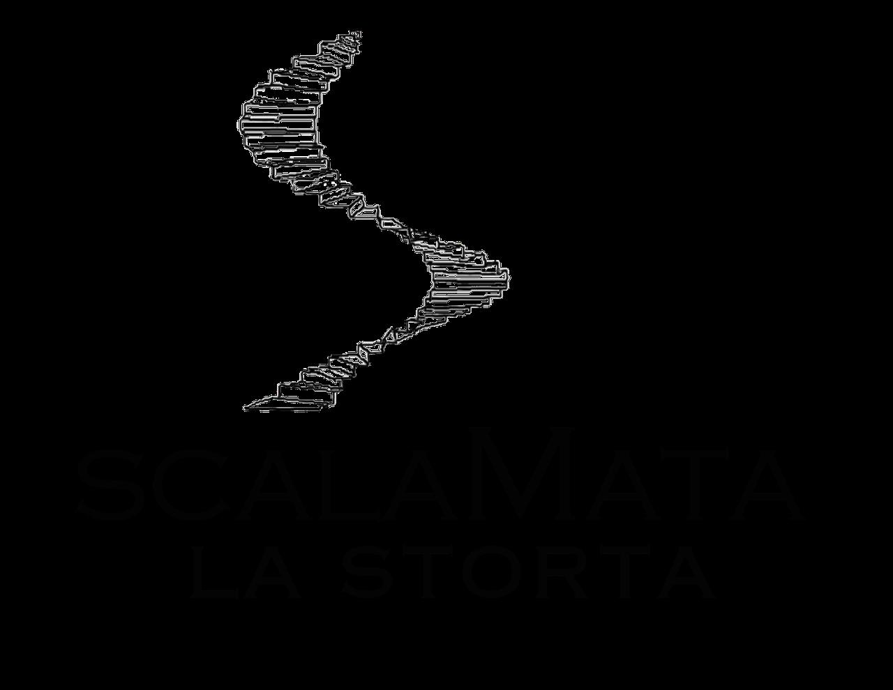 Scala mata la storta logo_med